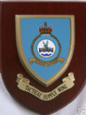 RAF Royal Air Force Tactical Supply Wing Regimental Military Wall Plaque